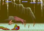 Altered Beast Arcade 47