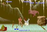 Altered Beast Arcade 48