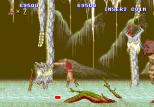 Altered Beast Arcade 60
