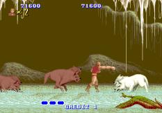 Altered Beast Arcade 65