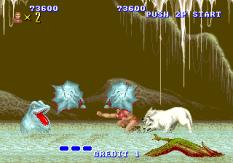 Altered Beast Arcade 66