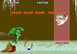 Altered Beast Arcade 79