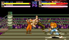Final Fight Arcade 069