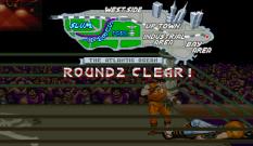 Final Fight Arcade 074