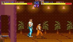 Final Fight Arcade 094
