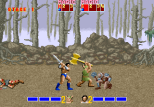 Golden Axe Arcade 006
