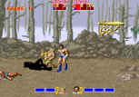 Golden Axe Arcade 008