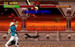Mortal Kombat 2 Arcade 030