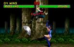 Mortal Kombat 2 Arcade 092
