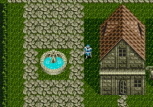 Phantasy Star 3 Megadrive 030