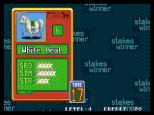 Stakes Winner Neo Geo 06