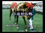 Stakes Winner Neo Geo 18