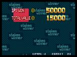 Stakes Winner Neo Geo 48