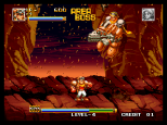 Top Hunter Neo Geo 135