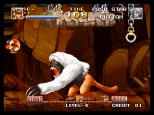 Top Hunter Neo Geo 145