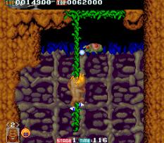 Toki Arcade 33
