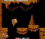 Toki Arcade 36