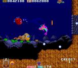 Toki Arcade 63