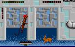 Gordo 106 Atari Lynx 038