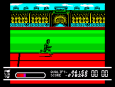 Daley Thompson's Olympic Challenge ZX Spectrum 110