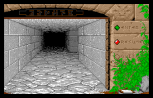 Dungeon Master Amiga 003