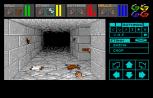 Dungeon Master Amiga 007