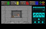 Dungeon Master Amiga 013