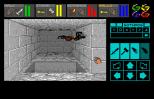 Dungeon Master Amiga 015