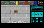 Dungeon Master Amiga 016