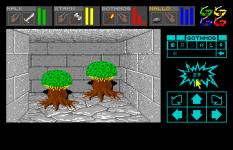 Dungeon Master Amiga 021