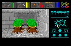 Dungeon Master Amiga 022