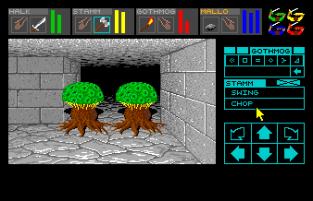 Dungeon Master Amiga 023