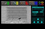 Dungeon Master Amiga 024