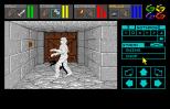 Dungeon Master Amiga 026