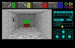 Dungeon Master Amiga 027