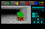 Dungeon Master Amiga 028