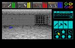 Dungeon Master Amiga 029