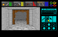 Dungeon Master Amiga 033