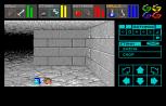 Dungeon Master Amiga 036