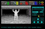 Dungeon Master Amiga 039