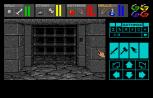 Dungeon Master Amiga 040