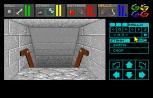 Dungeon Master Amiga 041
