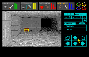 Dungeon Master Amiga 042