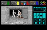 Dungeon Master Amiga 046