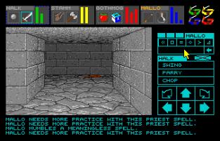 Dungeon Master Amiga 053
