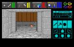 Dungeon Master Amiga 057