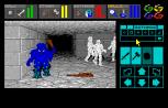 Dungeon Master Amiga 058