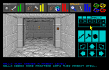 Dungeon Master Amiga 060