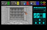Dungeon Master Amiga 063