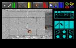 Dungeon Master Amiga 069